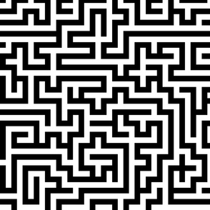 Labyrinth ~  Black and White