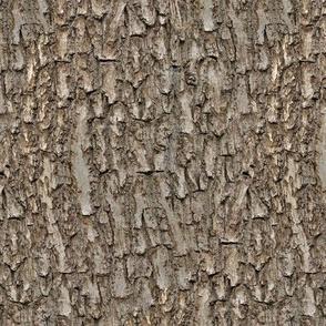 Natural Tree Bark
