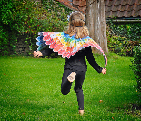 Fantastic Feathers size 2-6 years