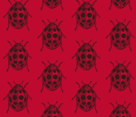 Rrrrrrrrresized_lady_bug_v3_shop_preview