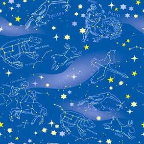 Constellations and Milky Way