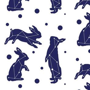 bunny skies