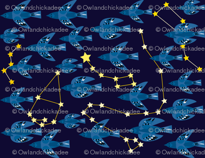 Constellation Migration 4