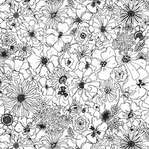 Pen and Ink Flowers