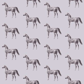 Arabian Horse on Smokey Grey, Small