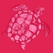 Pink Loggerhead Sea Turtle