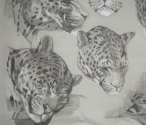 Meheut panther