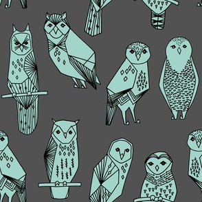 Geometric Owls - Charcoal/Pale Turquoise by Andrea Lauren
