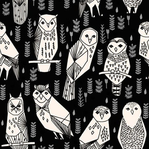 Parliament of Owls - Black/Characoal/Champagne by Andrea Lauren