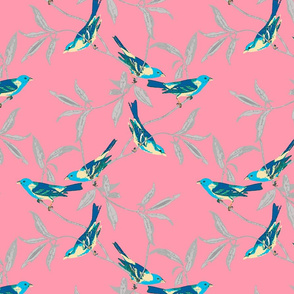 Blue Birds on Coral