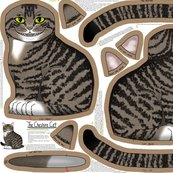 Cheshire_cat_kit_150_shop_thumb