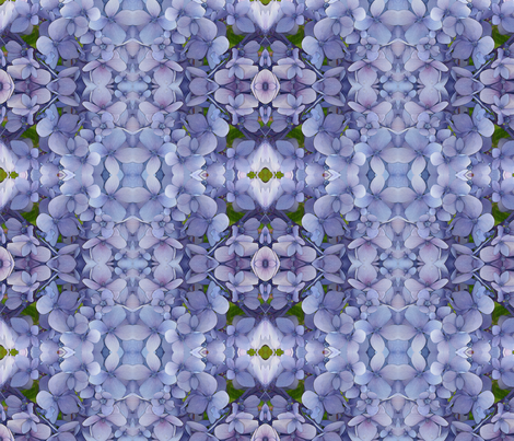 newhydrangea fabric by penelopeventura on Spoonflower - custom fabric