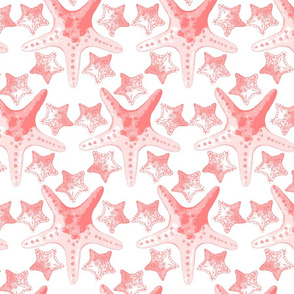 coralstarfishpattern
