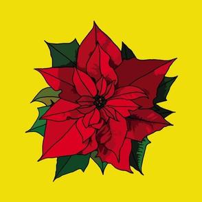 Poinsettia on yellow