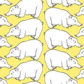 Polar Bear on Honey