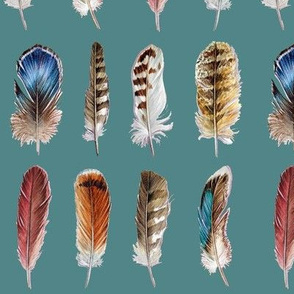 Bird Feathers (Green Background)