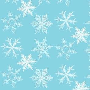 Snowflakes - ice blue