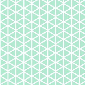 Triangle Lattice on Mint
