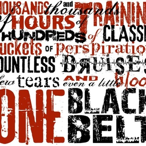 One Black Belt (color variation)