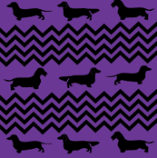 Purple and Black Weenie Chevron