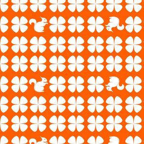 Clover_Orange