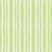 broad pin stripe in mojito