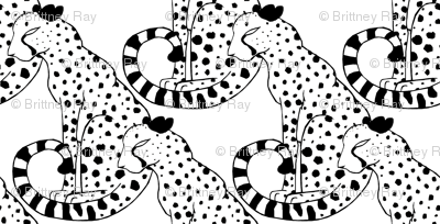 Black and White Cheetahs