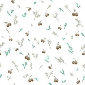 Pine and Acorns
