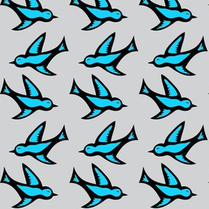 bird_variations_blue_grey_black
