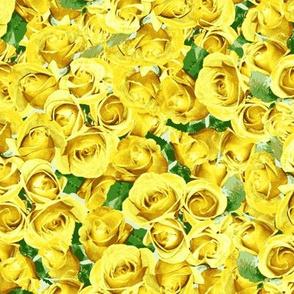 Abundant Roses -  Yellow