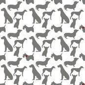 Rrrrrrspotted_dog_on_clear_background_shop_thumb