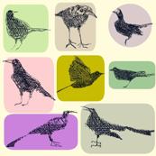 Ways of Looking at a Blackbird
