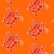 Loggerhead Sea Turtle in Oranges