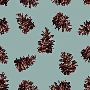 Pinecones on Soft Blue