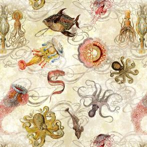 Vintage Sea Creatures