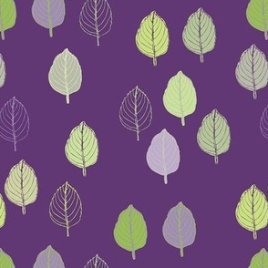 Basil lilac background