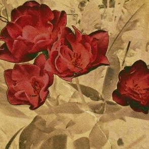 Sabbath Roses