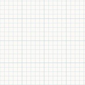 Graph Paper Check