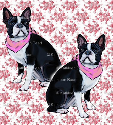 Boston Terrier Pink