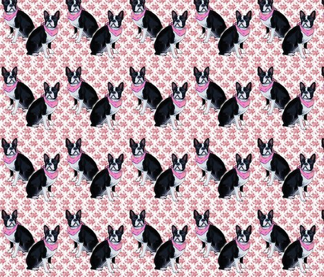 Rrrrrboston_terrier_pink_background_shop_preview