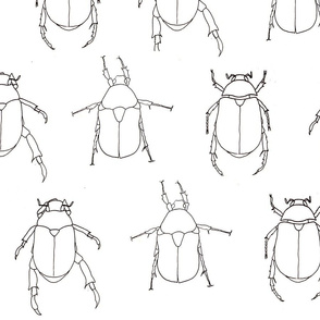 BeetleFabric2