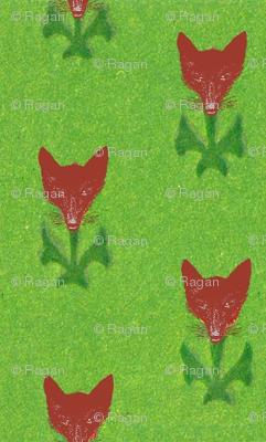 Fox Flowers
