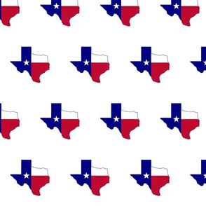 Texas Flag Map