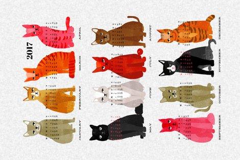 R2017_cat_lite_shop_preview