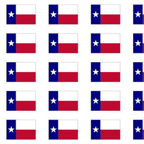 Lone Star Texas Flag