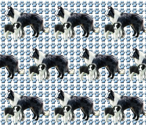 Rborder_collie_mother_and_pup_shop_preview