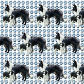 Rborder_collie_mother_and_pup_shop_thumb