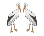 Rstorks2_thumb