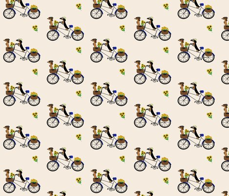 Rfrodosam_bicycle_shop_preview