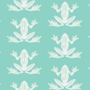 Frog Naturalist Illustration in Calming Green